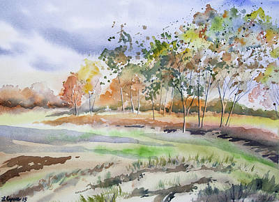 Painting - Watercolor - Autumn Birch Landscape by Cascade Colors