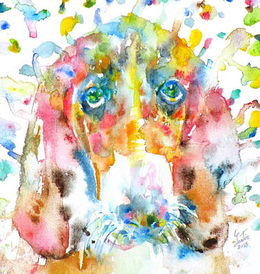 Painting - Watercolor Basset Hound by Fabrizio Cassetta