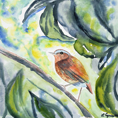 Painting - Watercolor - Bird Of The Rainforest by Cascade Colors