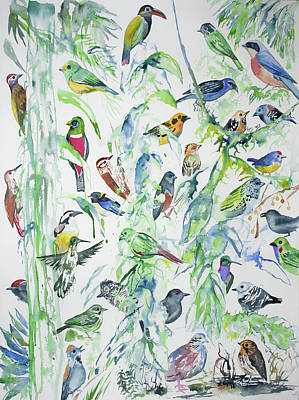 Flycatcher Painting - Watercolor - Birds Of Wildsumaco by Cascade Colors