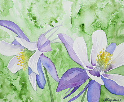 Painting - Watercolor - Blue Columbine Flowers by Cascade Colors