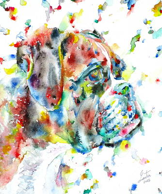 Painting - Watercolor Boxer by Fabrizio Cassetta
