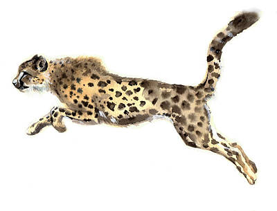 Cheetah Drawing - Watercolor Cheetah by Tatyana Komtsyan