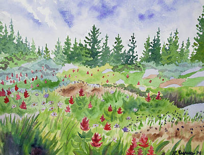 Painting - Watercolor - Colorado Flower And Tree Landscape by Cascade Colors