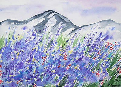 Painting - Watercolor - Colorado Mountain And Lupine Landscape by Cascade Colors