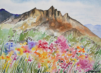 Painting - Watercolor - Colorado Rocky Mountains And Alpine Wildflowers by Cascade Colors