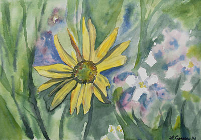 Painting - Watercolor - Colorado Wildflowers by Cascade Colors