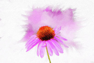 Mixed Media - Watercolor Cone Flower by Mary Timman