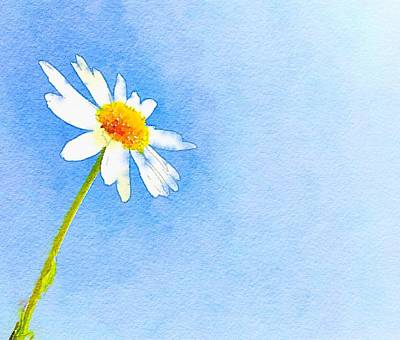 Corn Painting - Watercolor Daisy by Marianna Mills