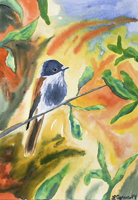 Painting - Watercolor - Delicate Perching Bird by Cascade Colors