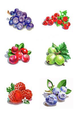 Raspberry Painting - Watercolor Food Illustration Berries  by Irina Sztukowski