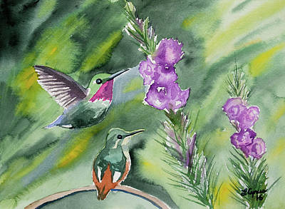 Painting - Watercolor - Gorgeted Woodstars And Purple Flowers by Cascade Colors