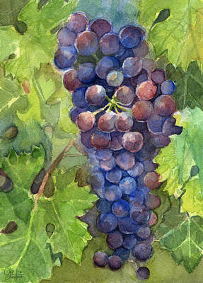 Watercolor Grapes Painting Art Print by Olga Shvartsur