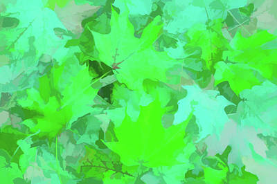 Photograph - Watercolor Green Leaves by Aimee L Maher Photography and Art Visit ALMGallerydotcom
