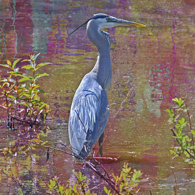 Photograph - Watercolor Heron by Suzanne Stout