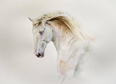 Watercolor Lusitano Horse Portrait Original