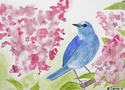 Painting - Watercolor - Mountain Bluebird by Cascade Colors