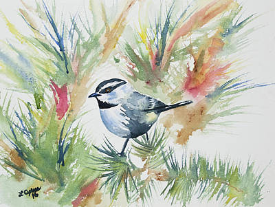 Watercolor - Mountain Chickadee And Pine Original