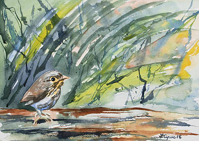 Painting - Watercolor - Ochre-breasted Antpitta by Cascade Colors