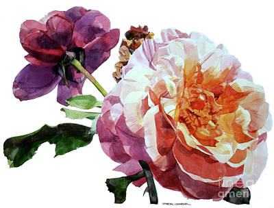 Painting - Watercolor Of Two Roses In Pink And Violet On One Stem That  I Dedicate To Jacques Brel by Greta Corens
