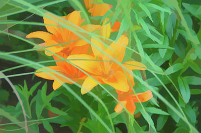 Photograph - Watercolor Orange Tiger Lilies by Aimee L Maher Photography and Art Visit ALMGallerydotcom