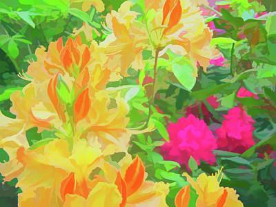 Photograph - Watercolor Orangeburst by Aimee L Maher Photography and Art Visit ALMGallerydotcom