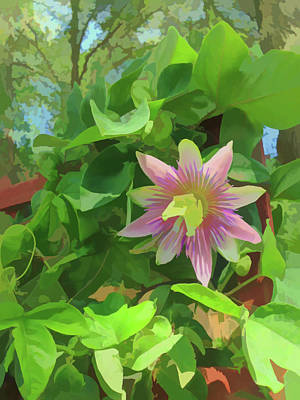 Photograph - Watercolor Passion Flower 3 by Aimee L Maher Photography and Art Visit ALMGallerydotcom