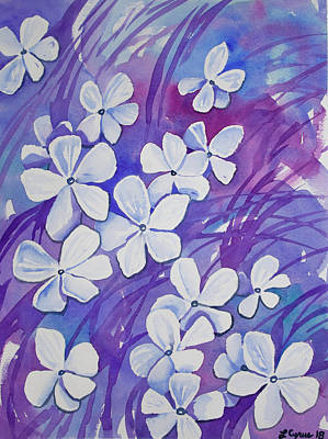 Painting - Watercolor- Phlox Wildflowers by Cascade Colors