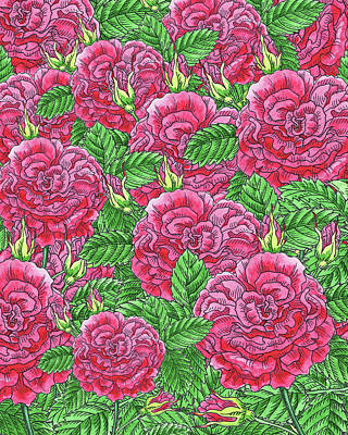 Royalty-Free and Rights-Managed Images - Watercolor Pink Rose Pattern by Irina Sztukowski