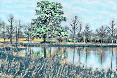 Photograph - Watercolor Pond Scenery by Gina O'Brien