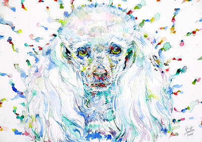 Painting - Watercolor Poodle by Fabrizio Cassetta