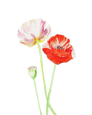 Painting - Watercolor Poppies by Irina Sztukowski