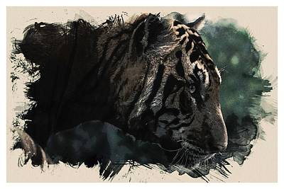 Background Painting - Watercolor Portrait Of Bengal Tiger by Celestial Images