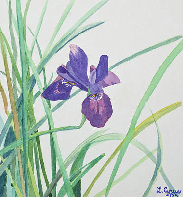 Painting - Watercolor - Purple Iris by Cascade Colors
