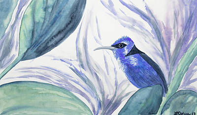 Painting - Watercolor - Red-legged Honeycreeper by Cascade Colors