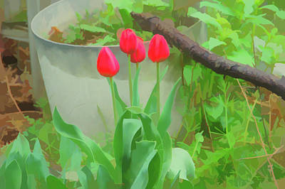 Photograph - Watercolor Red Tulips by Aimee L Maher Photography and Art Visit ALMGallerydotcom