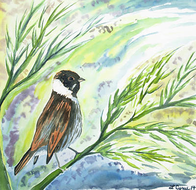 Painting - Watercolor - Reed Bunting by Cascade Colors