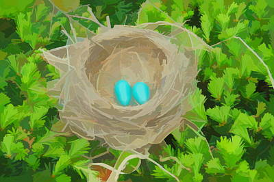 Photograph - Watercolor Robins Nest by Aimee L Maher ALM GALLERY