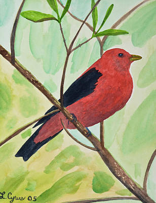 Painting - Watercolor - Scarlet Tanager by Cascade Colors