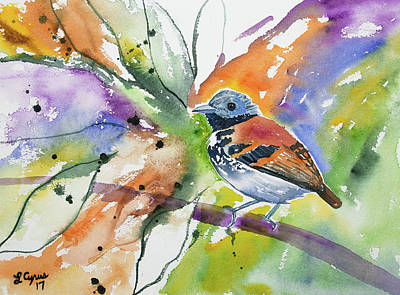 Nicaragua Painting - Watercolor - Spotted Antbird by Cascade Colors