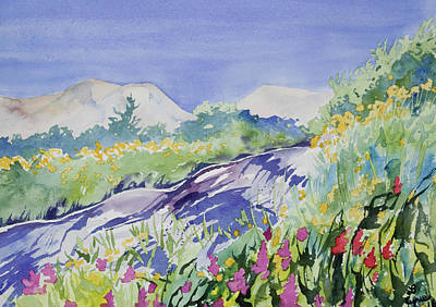 Nederland Painting - Watercolor - Sunny Colorado Summer by Cascade Colors
