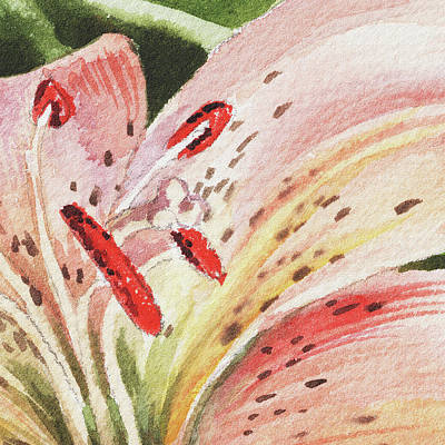 Lilies Royalty-Free and Rights-Managed Images - Watercolor Tiger Lily Close Up II by Irina Sztukowski