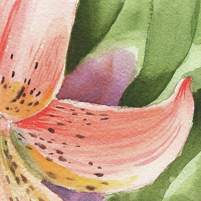 Lilies Royalty-Free and Rights-Managed Images - Watercolor Tiger Lily Dance Of Petals Close Up  by Irina Sztukowski