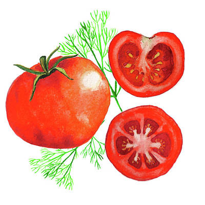 Vegetable Market Drawing - Watercolor Tomatoes by Lyudmila Chetvertnykh