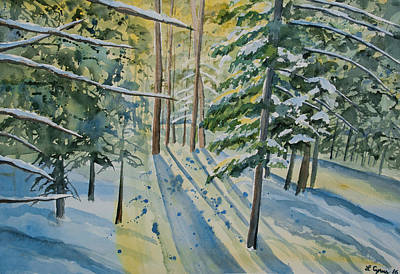 Painting - Watercolor - Winter Pine Forest Magic by Cascade Colors