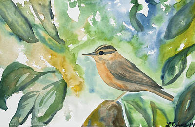 Maps Maps And More Maps - Watercolor - Worm-eating Warbler by Cascade Colors