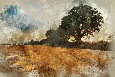 Watercolour Painting Of Hay Bales In Field During Summer Sunset  Art Print by Matthew Gibson