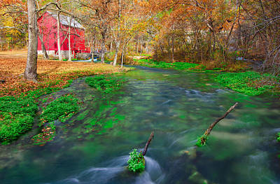 Alley Spring Photograph - Watercress At Alley Spring  by Jackie Novak