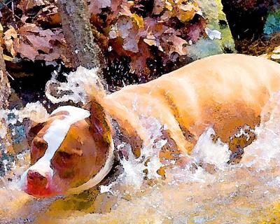 Waterdog Art Print by John Toxey