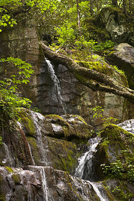 Photograph - Waterfall 5304 by Peter Skiba